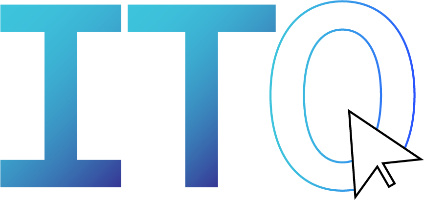 Information Technology Organization